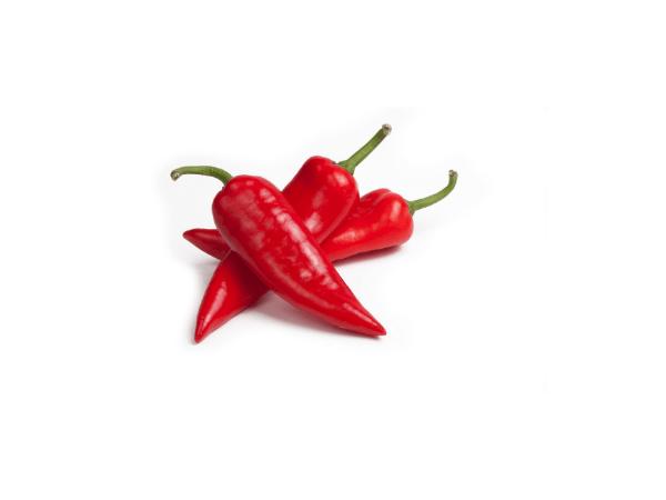 Paprika-šilja-crvena
