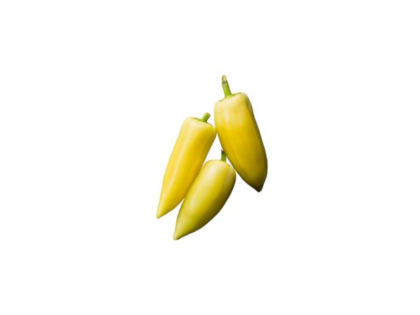 Paprika-šilja