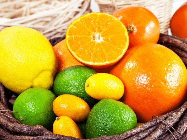 veleprodaja voća i povrća